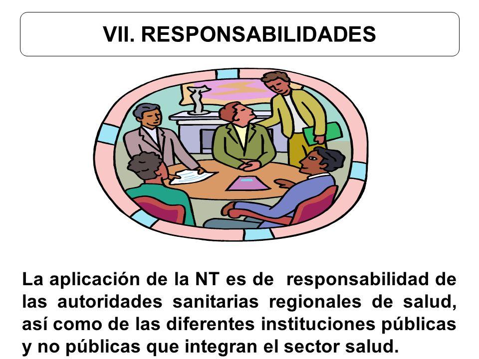 VII. RESPONSABILIDADES