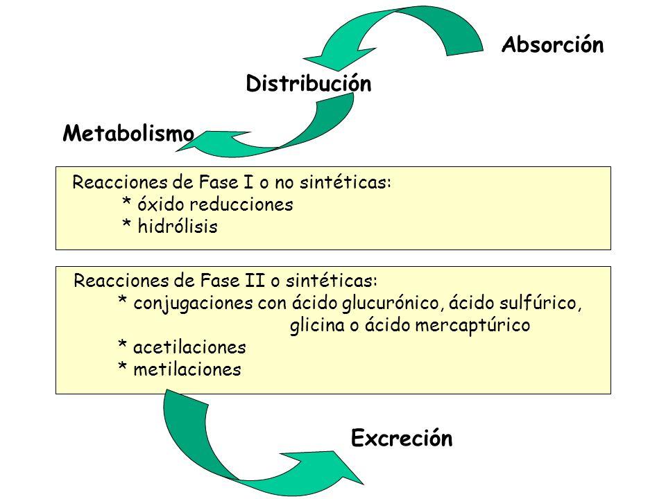 Absorción Distribución Metabolismo Excreción