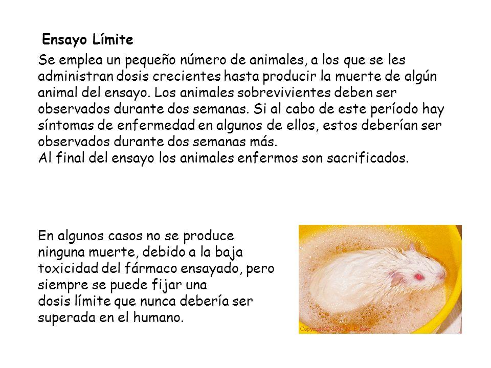 Ensayo Límite Se emplea un pequeño número de animales, a los que se les.