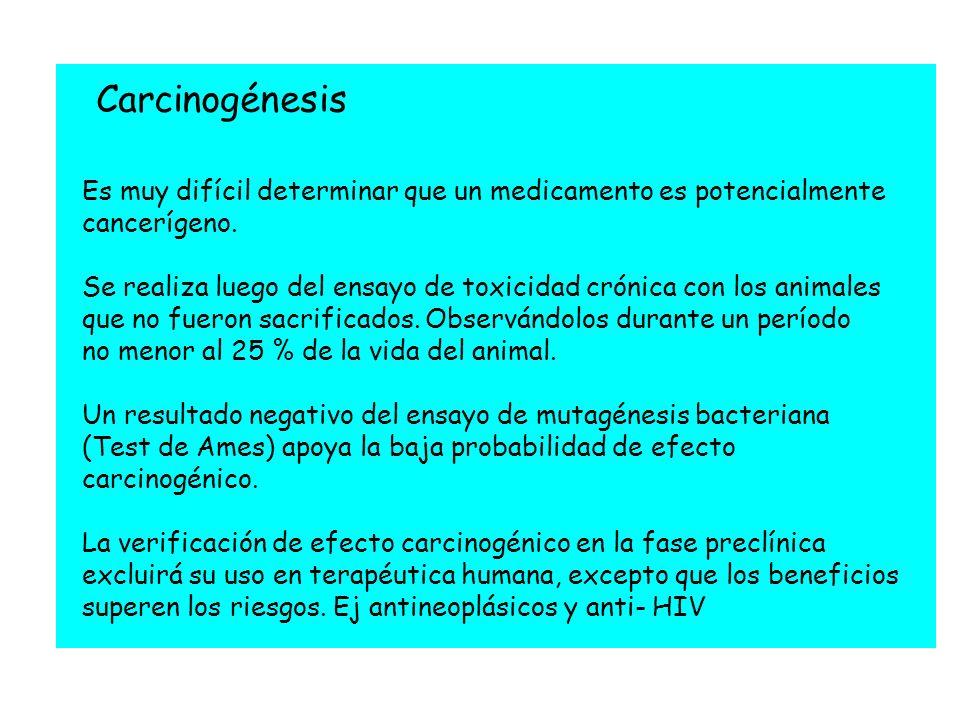 Carcinogénesis Es muy difícil determinar que un medicamento es potencialmente cancerígeno.
