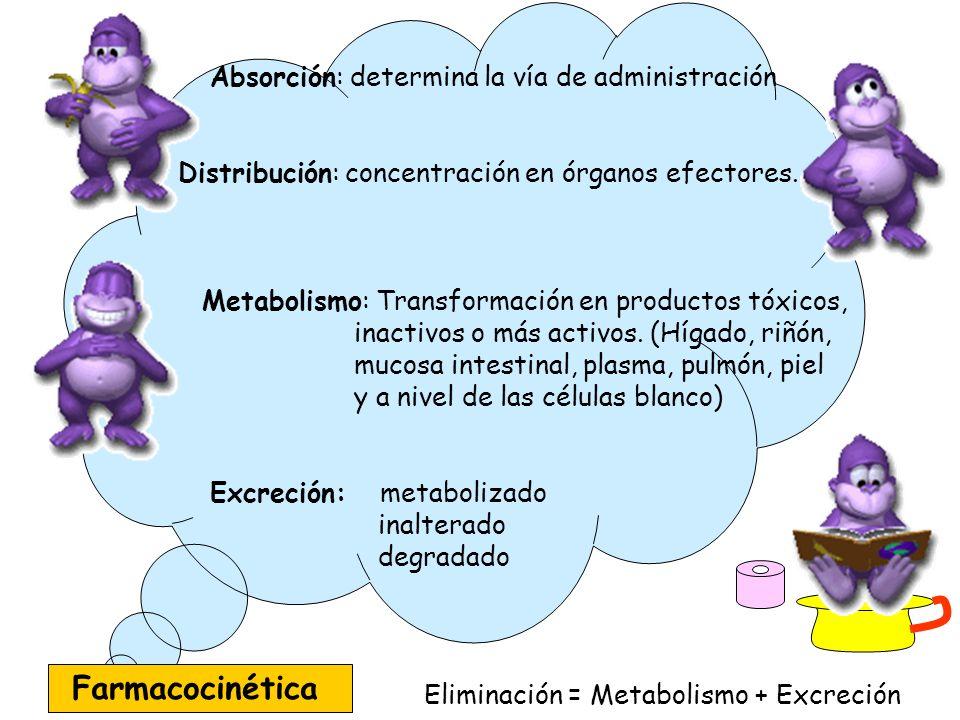 Farmacocinética Absorción: determina la vía de administración