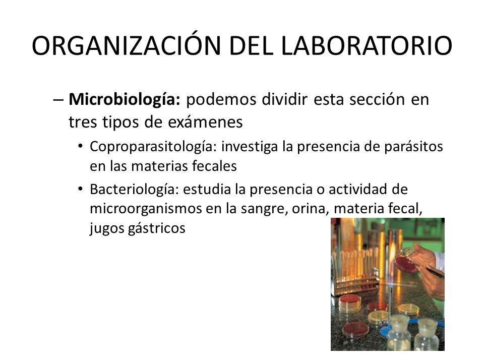ORGANIZACIÓN DEL LABORATORIO