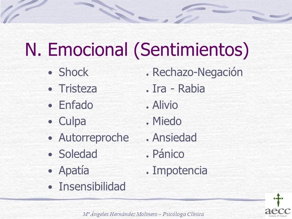 N. Emocional (Sentimientos)