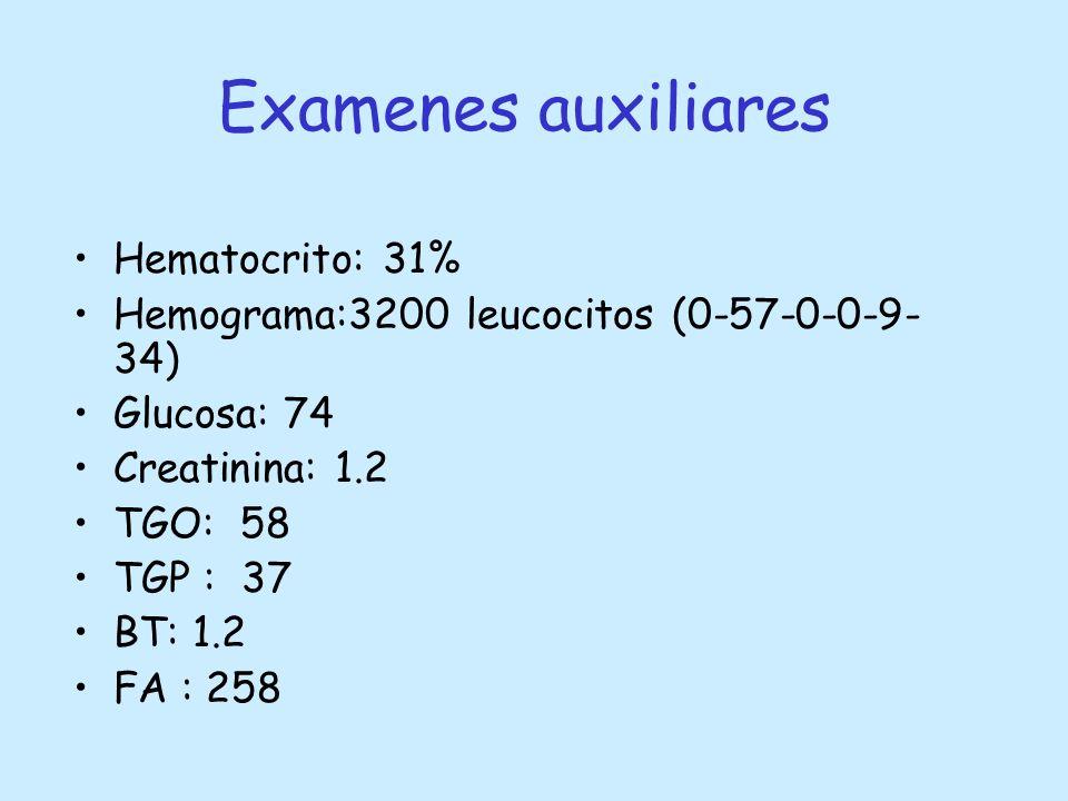 Examenes auxiliares Hematocrito: 31%