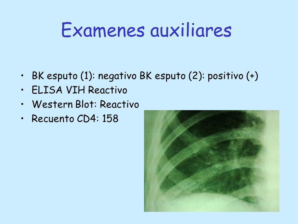Examenes auxiliares BK esputo (1): negativo BK esputo (2): positivo (+) ELISA VIH Reactivo. Western Blot: Reactivo.
