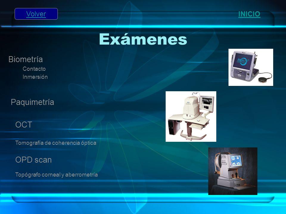 Exámenes Biometría Paquimetría OCT OPD scan Volver INICIO Contacto