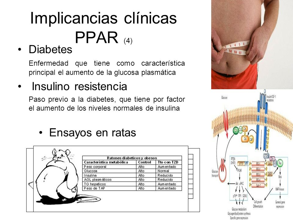 Implicancias clínicas PPAR (4)