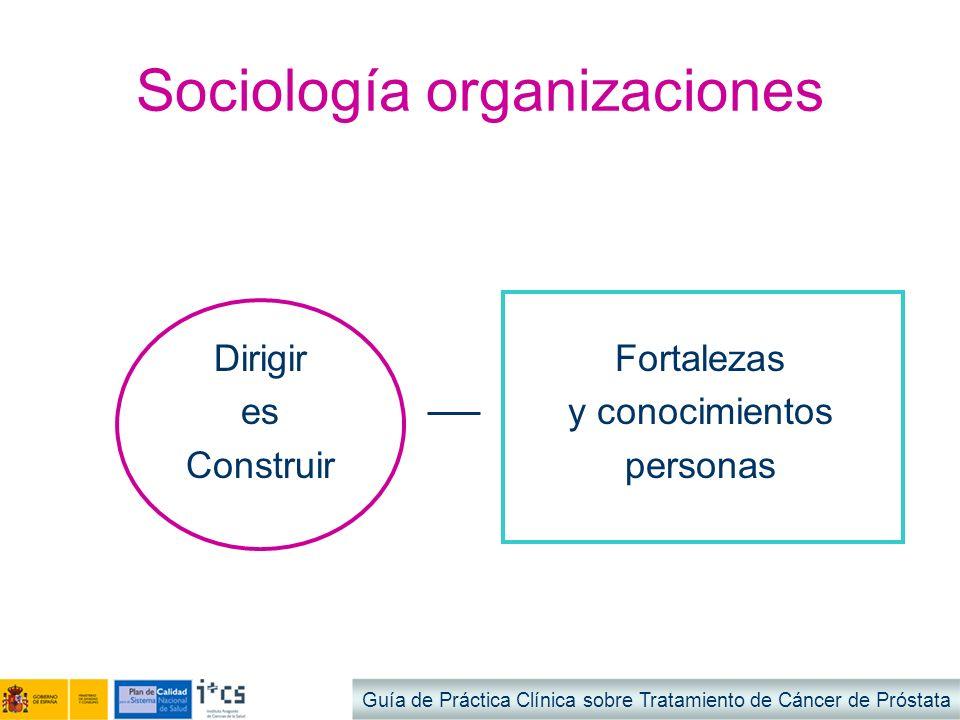 Sociología organizaciones