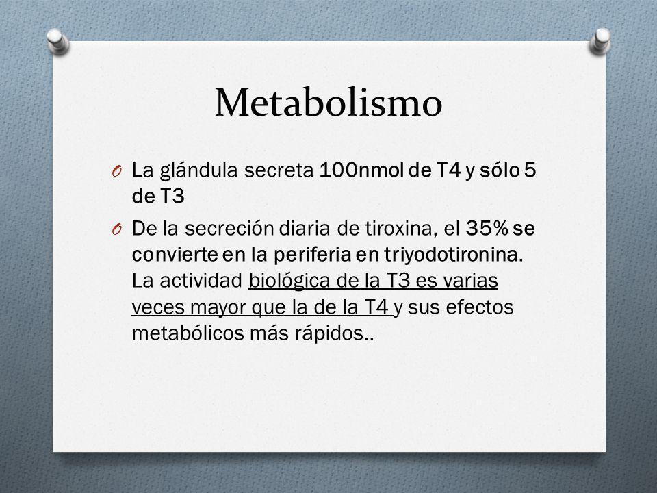 Metabolismo La glándula secreta 100nmol de T4 y sólo 5 de T3