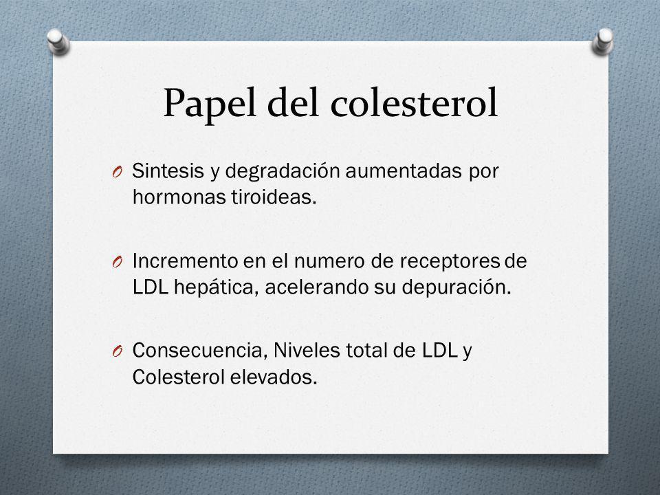 Papel del colesterol Sintesis y degradación aumentadas por hormonas tiroideas.