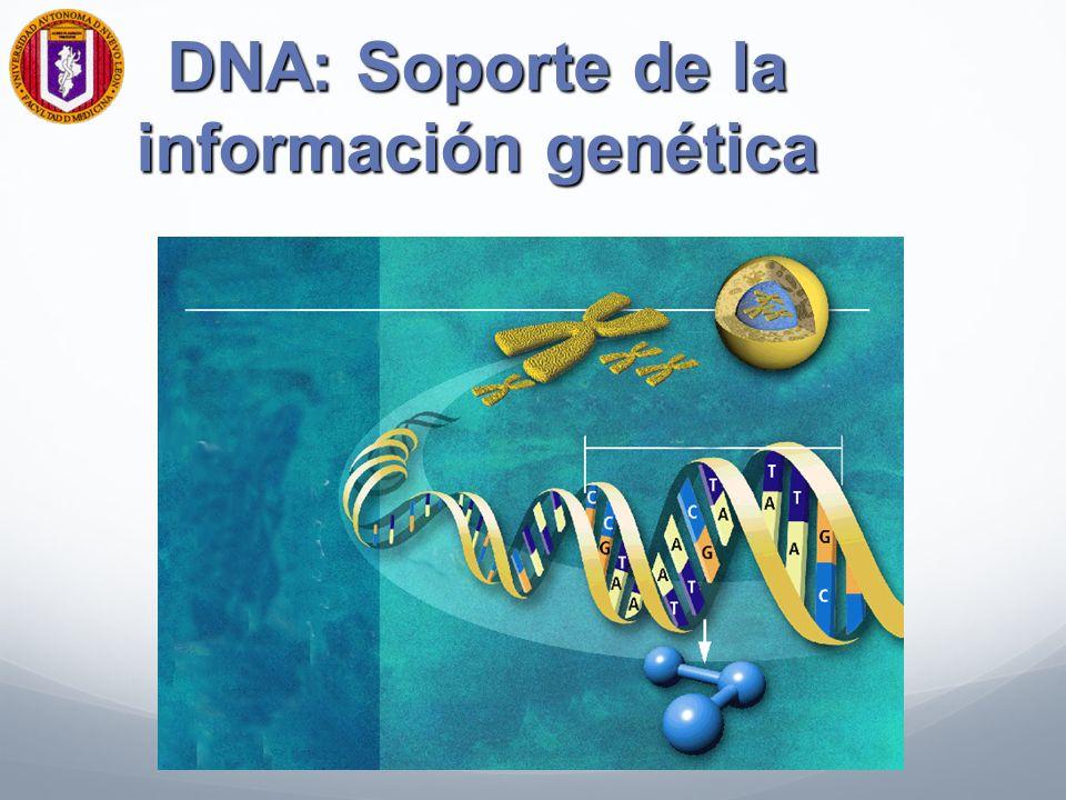 DNA: Soporte de la información genética