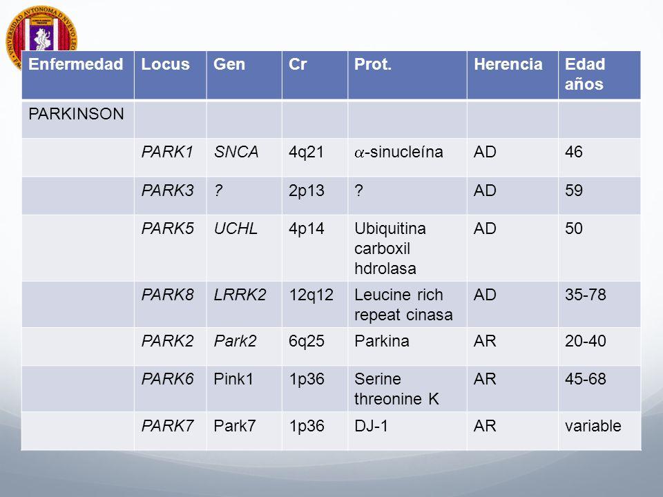 Enfermedad Locus. Gen. Cr. Prot. Herencia. Edad. años. PARKINSON. PARK1. SNCA. 4q21. a-sinucleína.