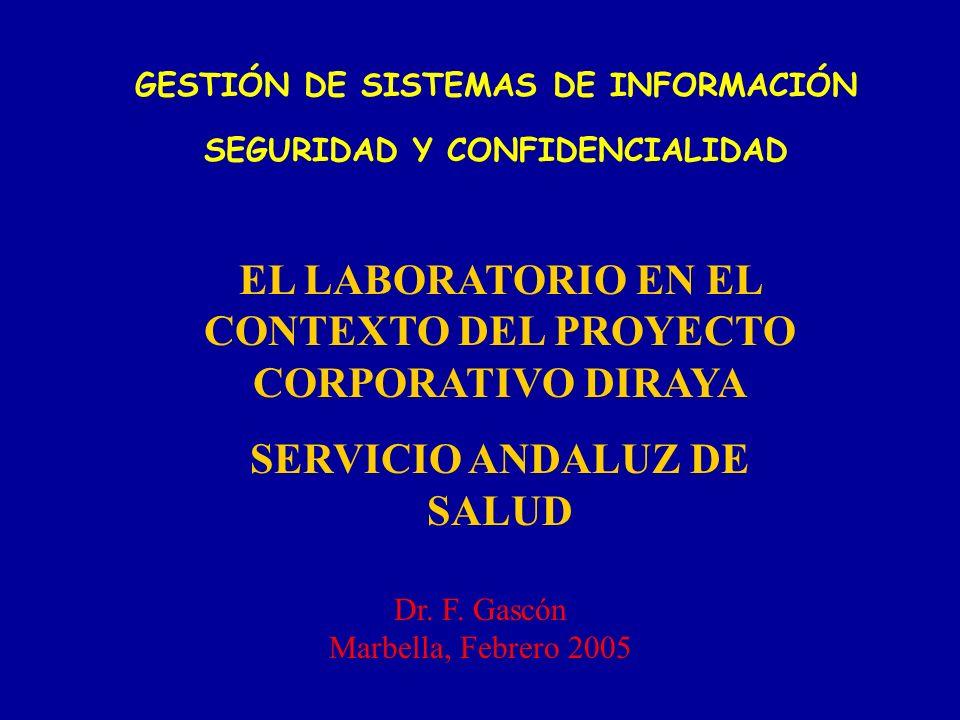 EL LABORATORIO EN EL CONTEXTO DEL PROYECTO CORPORATIVO DIRAYA