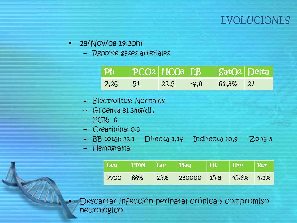 EVOLUCIONES 28/Nov/08 19:30hr. Reporte gases arteriales. Electrolitos: Normales. Glicemia 81,3mg/dL.