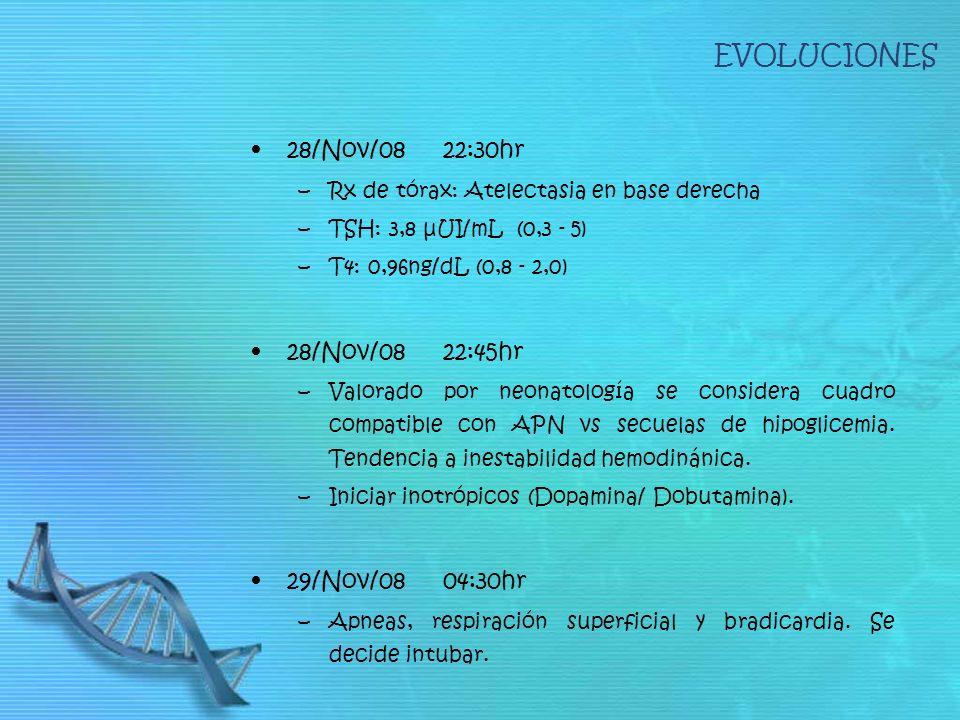 EVOLUCIONES 28/Nov/08 22:30hr 28/Nov/08 22:45hr 29/Nov/08 04:30hr