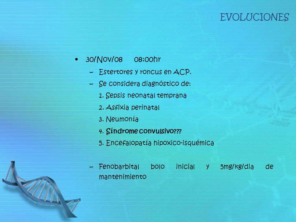 EVOLUCIONES 30/Nov/08 08:00hr Estertores y roncus en ACP.
