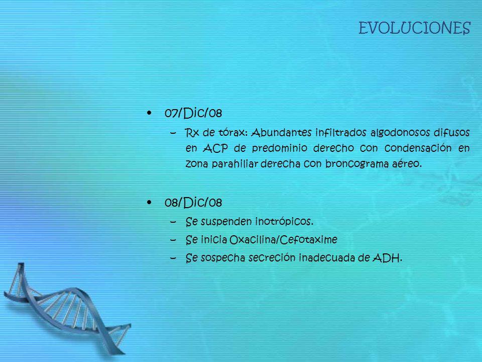 EVOLUCIONES 07/Dic/08 08/Dic/08