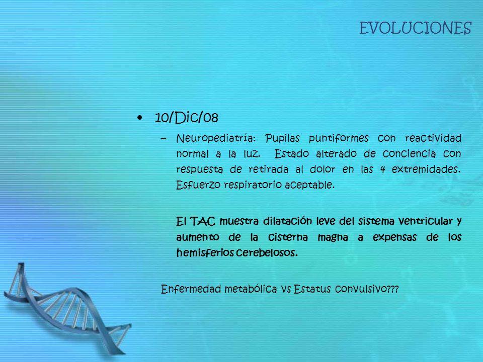 EVOLUCIONES 10/Dic/08.