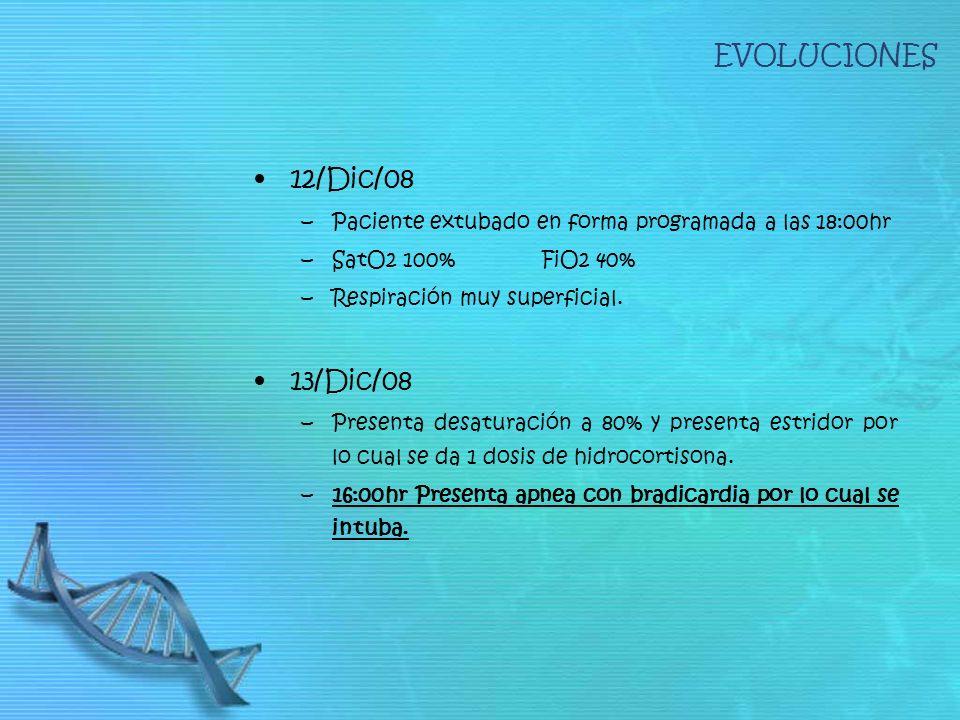 EVOLUCIONES 12/Dic/08 13/Dic/08