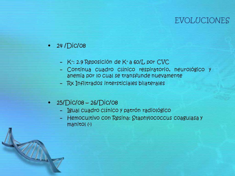 EVOLUCIONES 24 /Dic/08 25/Dic/08 – 26/Dic/08