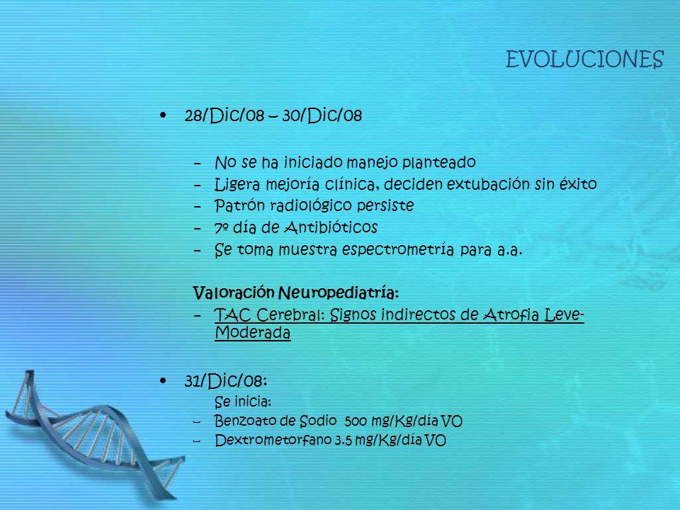 EVOLUCIONES 28/Dic/08 – 30/Dic/08 31/Dic/08: