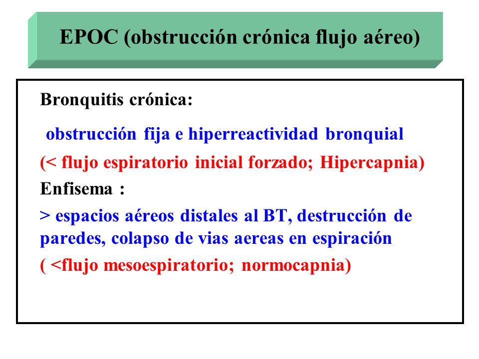 EPOC (obstrucción crónica flujo aéreo)