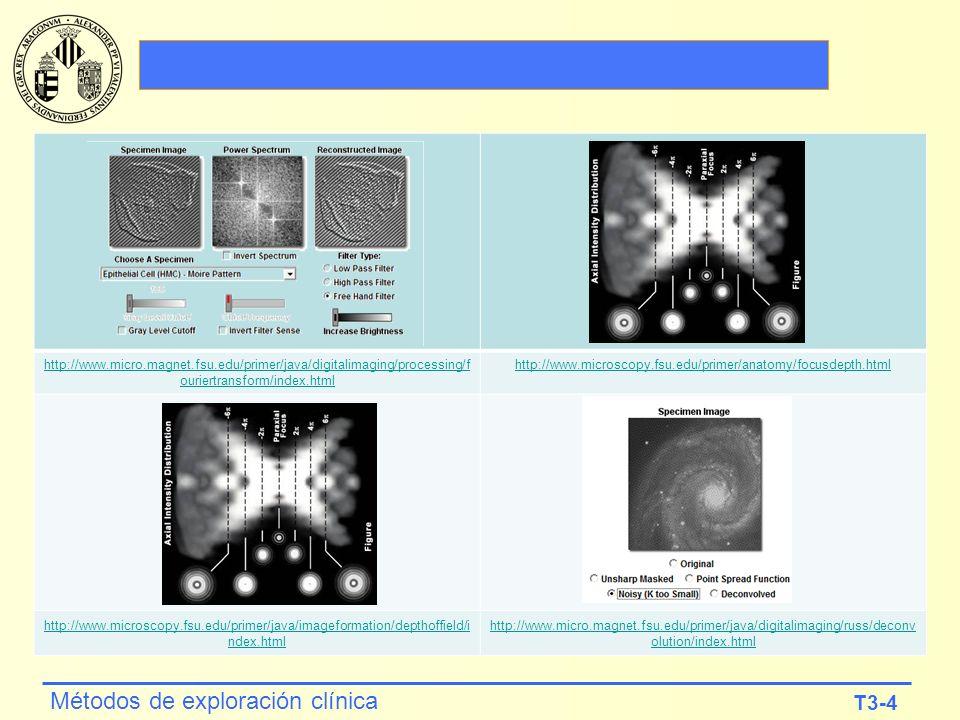 http://www. micro. magnet. fsu
