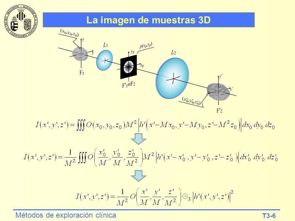 La imagen de muestras 3D