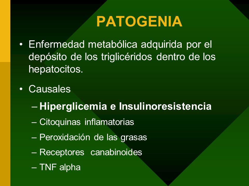 PATOGENIA Enfermedad metabólica adquirida por el depósito de los triglicéridos dentro de los hepatocitos.