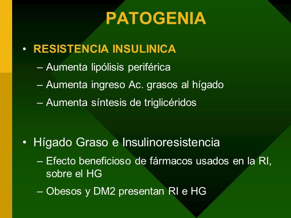 PATOGENIA Hígado Graso e Insulinoresistencia RESISTENCIA INSULINICA