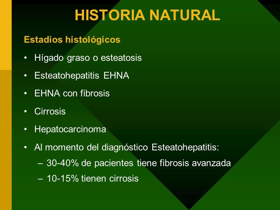 HISTORIA NATURAL Estadios histológicos Hígado graso o esteatosis