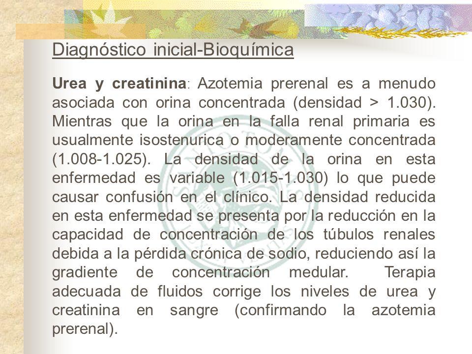 Diagnóstico inicial-Bioquímica