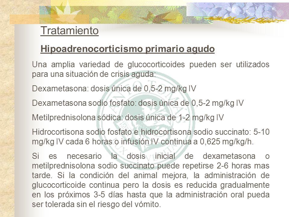 Tratamiento Hipoadrenocorticismo primario agudo