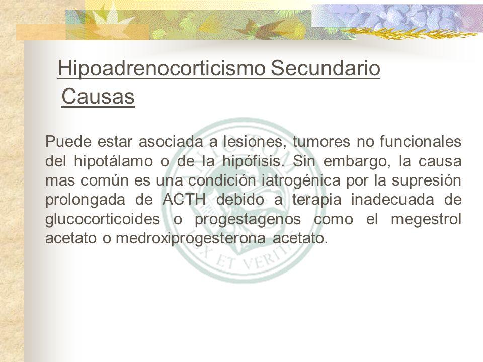 Hipoadrenocorticismo Secundario Causas