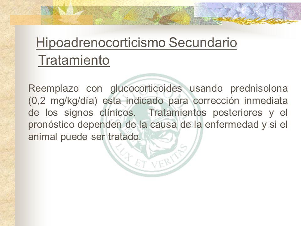 Hipoadrenocorticismo Secundario Tratamiento
