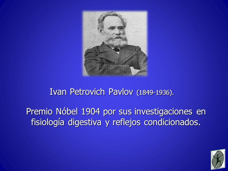 Ivan Petrovich Pavlov (1849-1936).