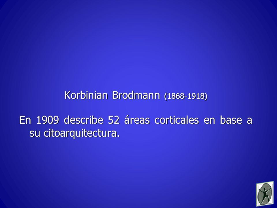 Korbinian Brodmann (1868-1918)