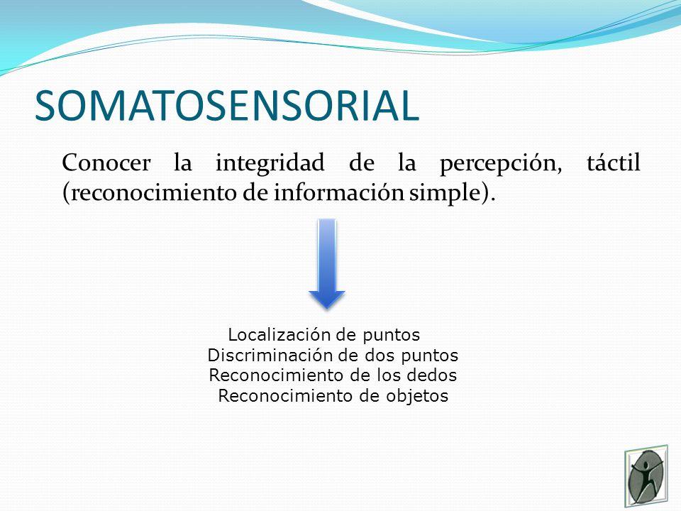 SOMATOSENSORIAL Conocer la integridad de la percepción, táctil (reconocimiento de información simple).