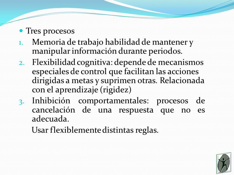 Tres procesos Memoria de trabajo habilidad de mantener y manipular información durante periodos.