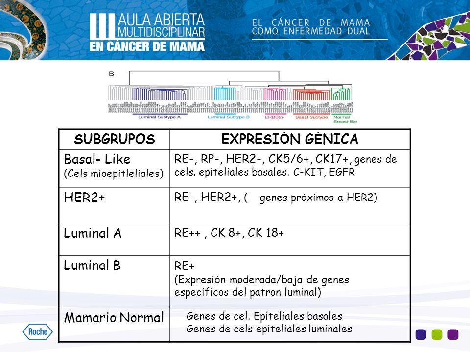 SUBGRUPOS EXPRESIÓN GÉNICA Basal- Like HER2+ Luminal A Luminal B