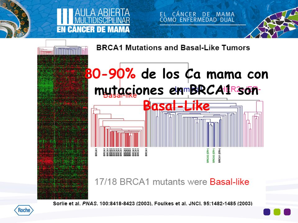 80-90% de los Ca mama con mutaciones en BRCA1 son Basal-Like