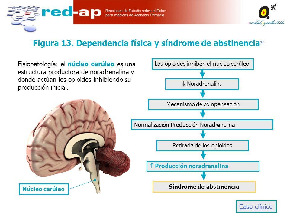 Figura 13. Dependencia física y síndrome de abstinencia40