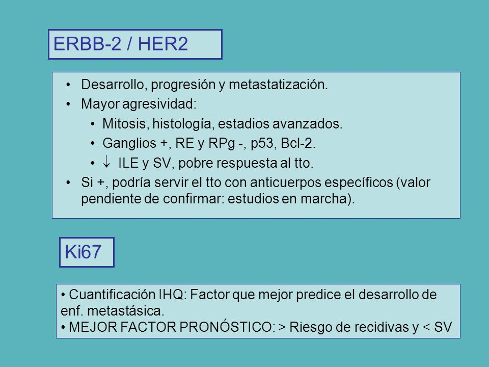 ERBB-2 / HER2 Ki67 Desarrollo, progresión y metastatización.