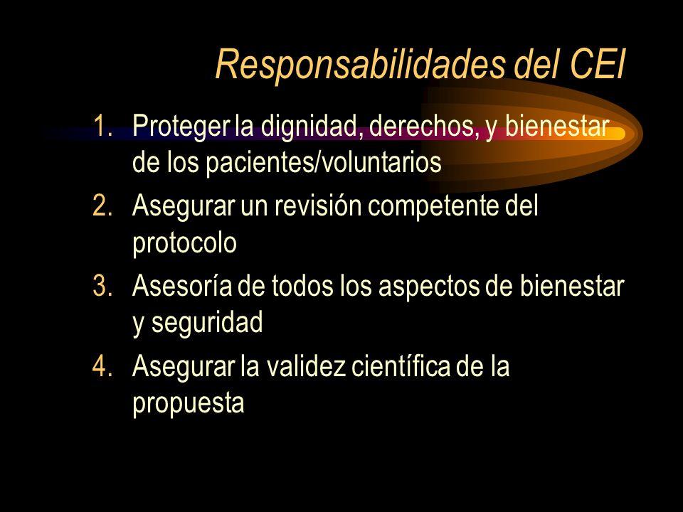 Responsabilidades del CEI