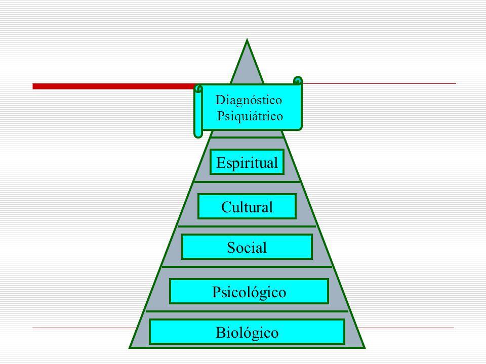 Espiritual Cultural Social Psicológico Biológico Diagnóstico