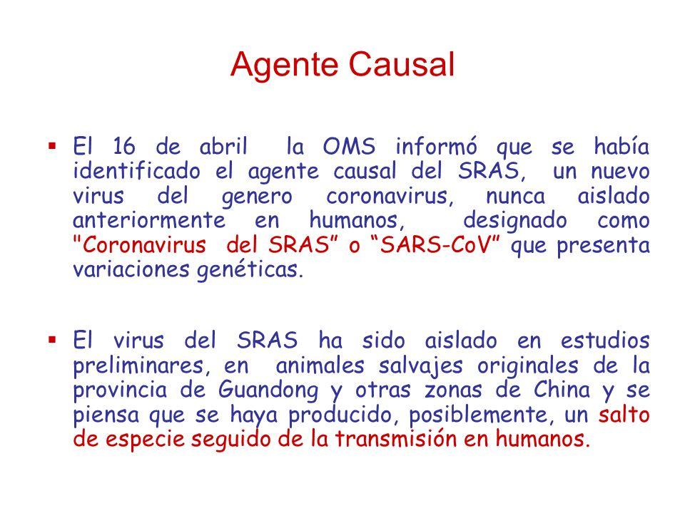 Agente Causal