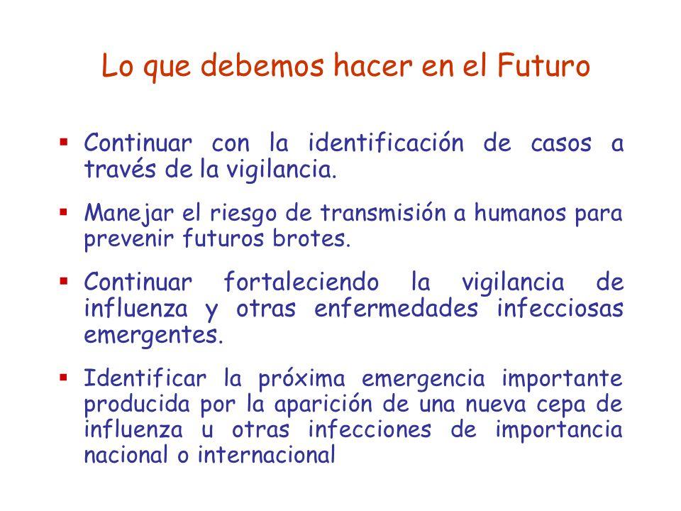 Lo que debemos hacer en el Futuro