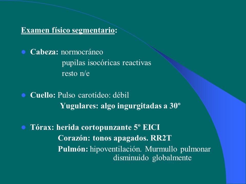 Examen físico segmentario: