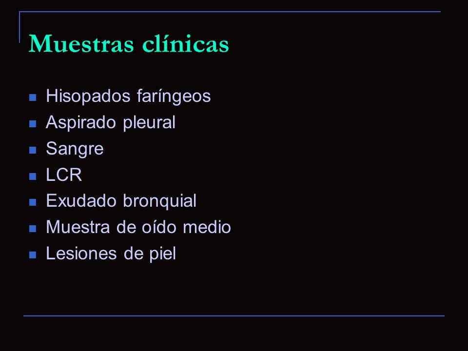 Muestras clínicas Hisopados faríngeos Aspirado pleural Sangre LCR