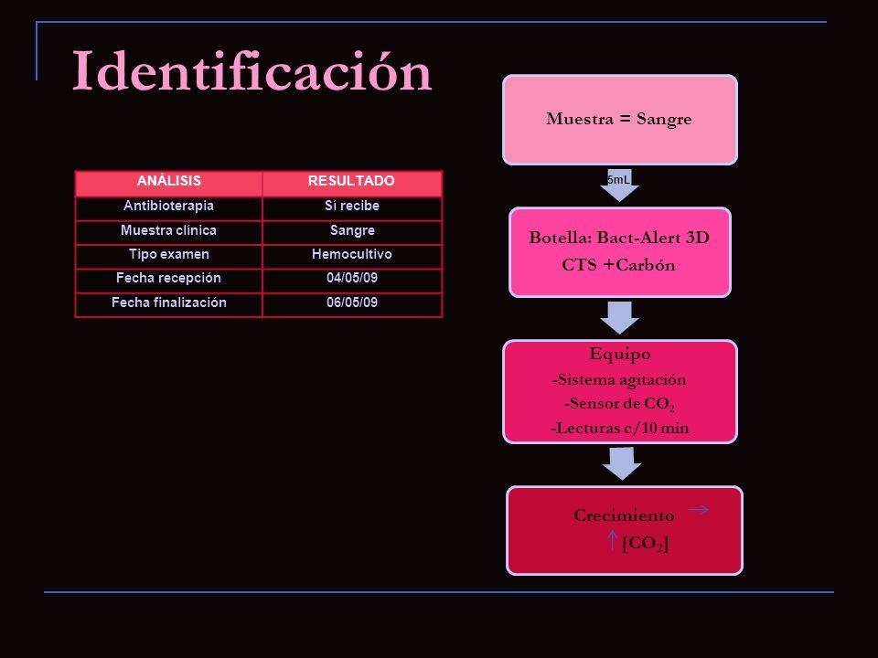 Identificación Equipo Botella: Bact-Alert 3D Crecimiento
